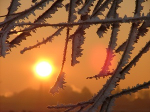Sol_no_Inverno